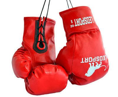 Перчатки боксерские на шнурках