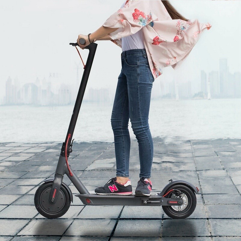Dorwizz Electric Scooter