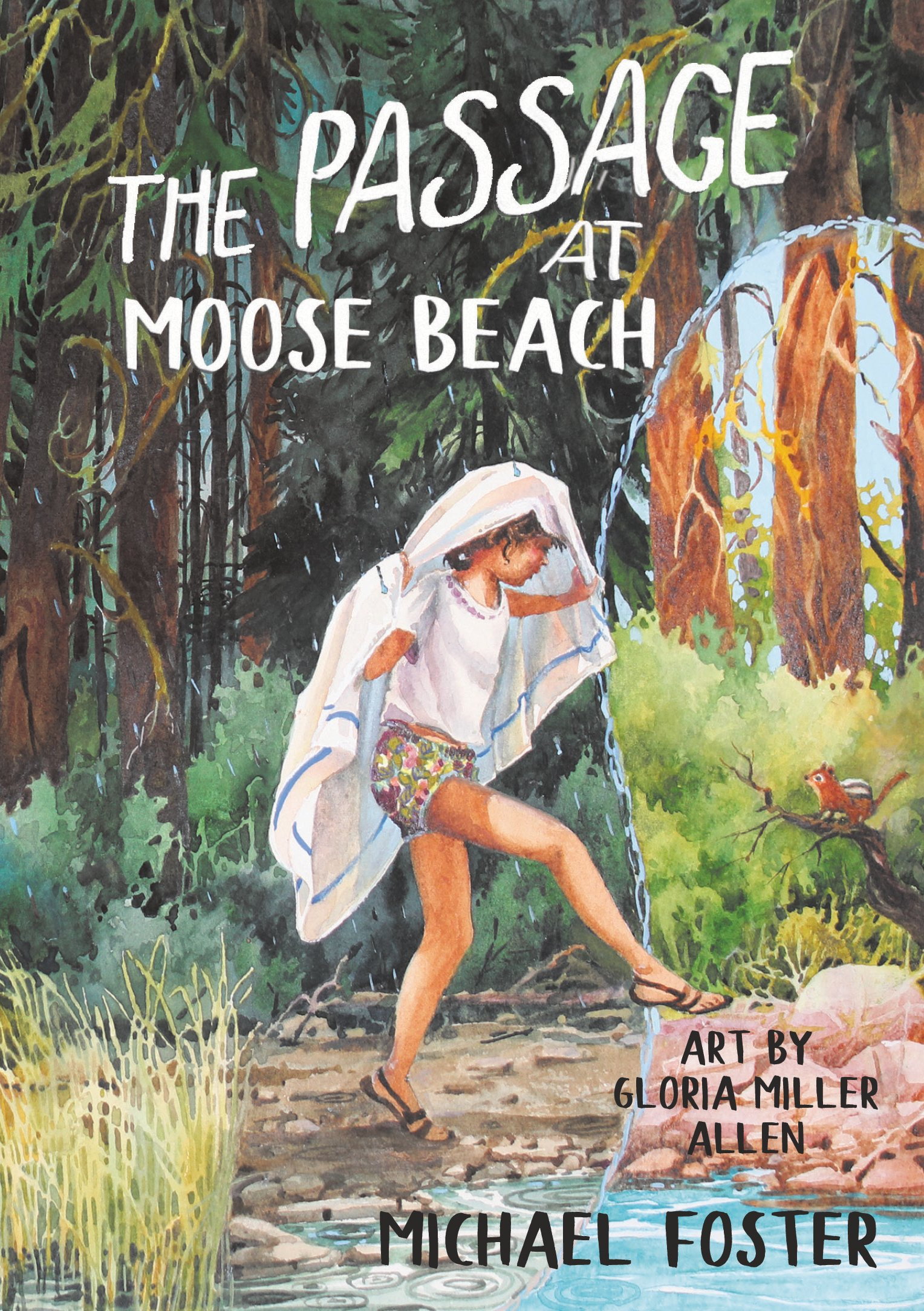 The Passage at Moose Beach (Paperback)