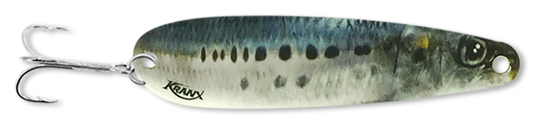Sardine *Live Image* (Nickel) 00216