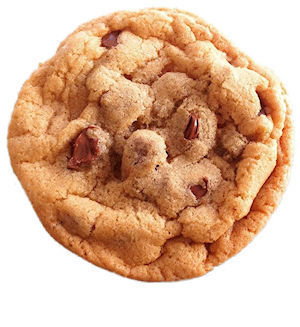 Bumzy's Gluten Free Chocolate Chip Cookie 100GF