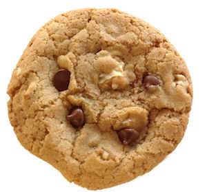 Bumzy's Classic Chocolate Chip with Walnuts 101