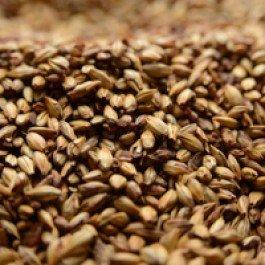 Briess 2-Row Caramel 60L, 1 lb