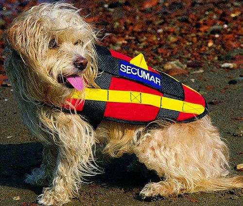 Secumar Hundeschwimmweste