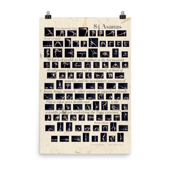 Tony's 84 Asanas Poster 84asanas-poster
