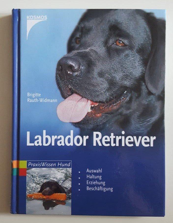 Labrador Retriever Kosmos 200