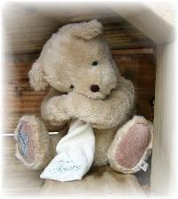 """""""Tears"""" Bear (2006) 00009"""