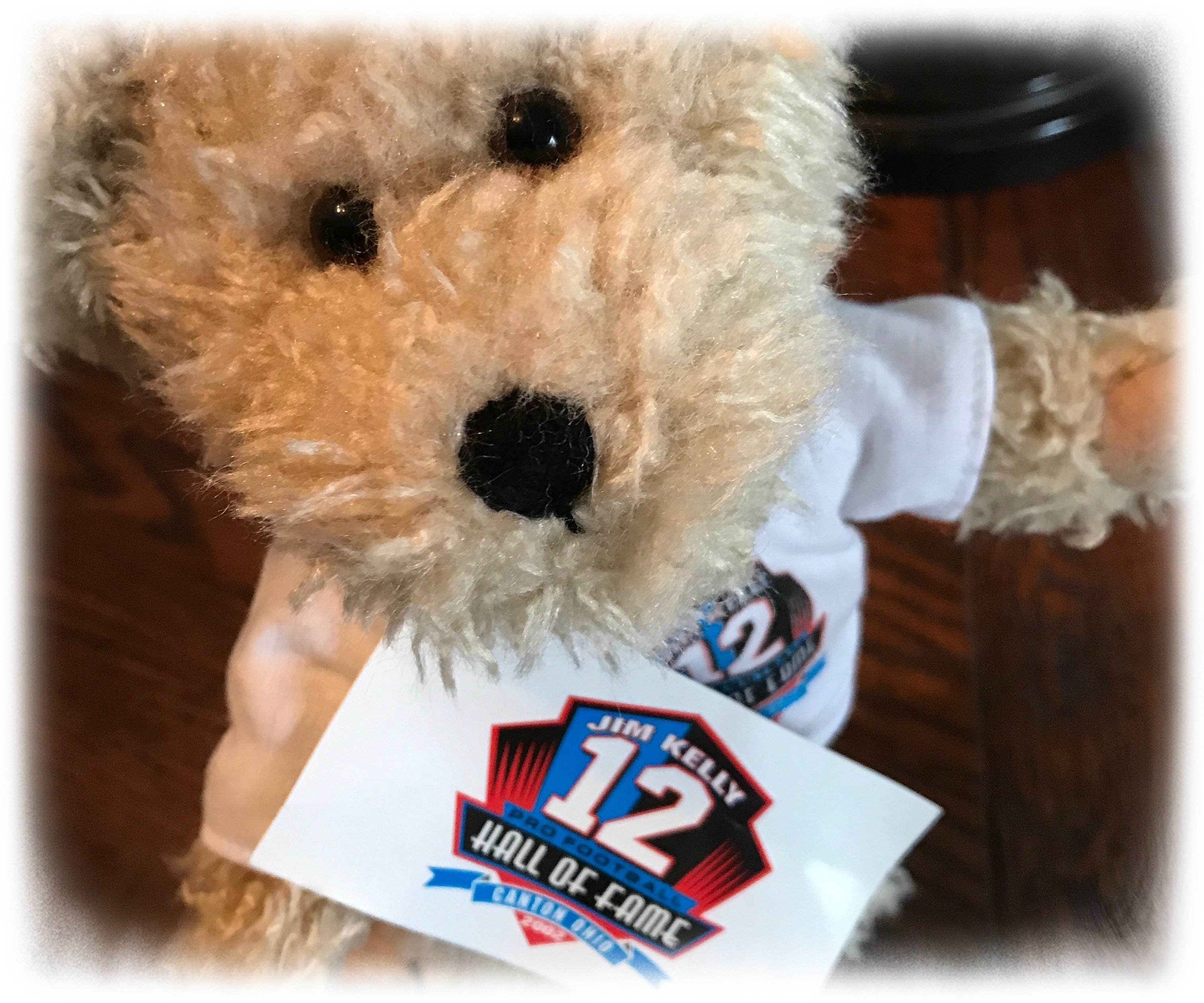 """Hall of Fame"" Bear (2002)"