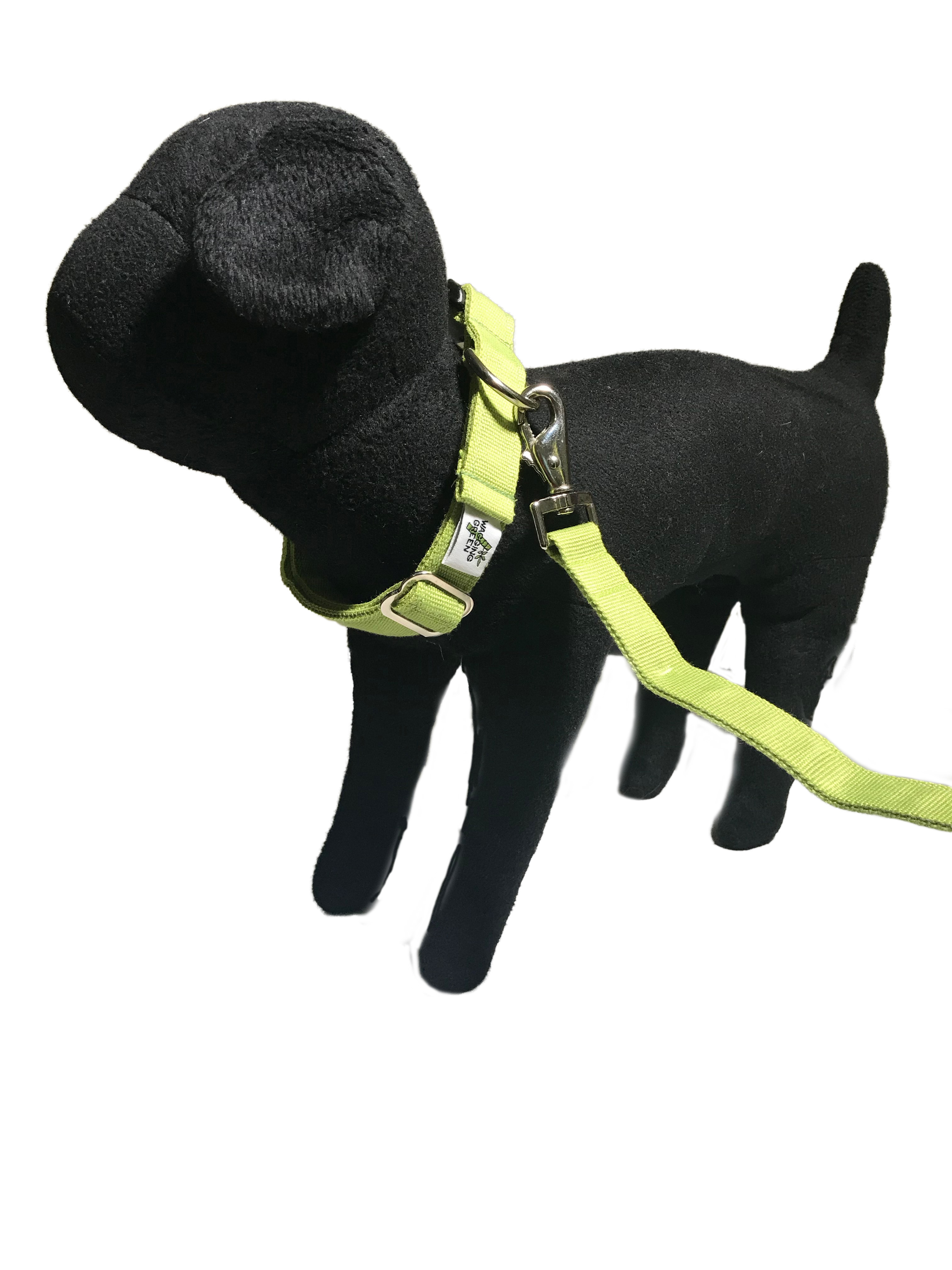 R Natural Bamboo Double Layer Buckle Collar/  Leash Set S001