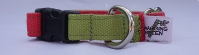 Eco Friendly Bamboo Dog Collar - Pink & Green (Clearance)