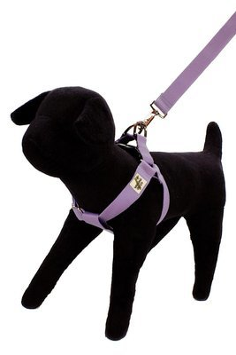 W Organic Bamboo Single Layer Dog Harness