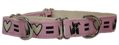 R Eco Friendly Bamboo Saving The Earth Series Martingale Collar