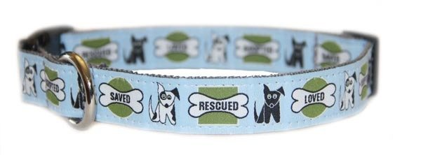 R Organic Bamboo Saving The Earth Series Dog Collars