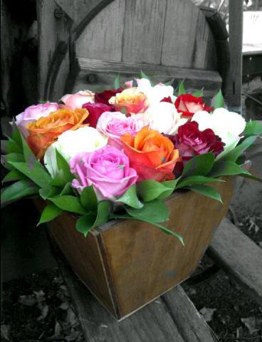 Roses in Galvanized JF17