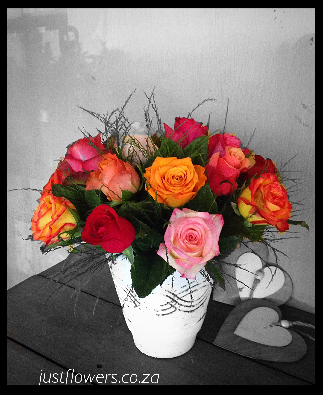 Rainbow Roses JF34