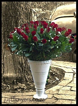 Mega Red Roses JF12