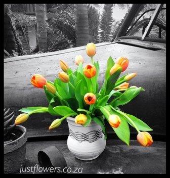 Tulip vase JF36