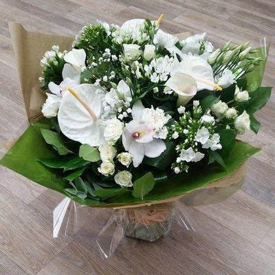Wonderful Whites Aqua 00071