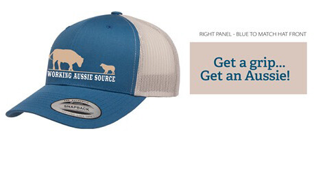 Working Aussie Source Ball Cap Hat - Blue and Silver Mesh back Australian Shepherd