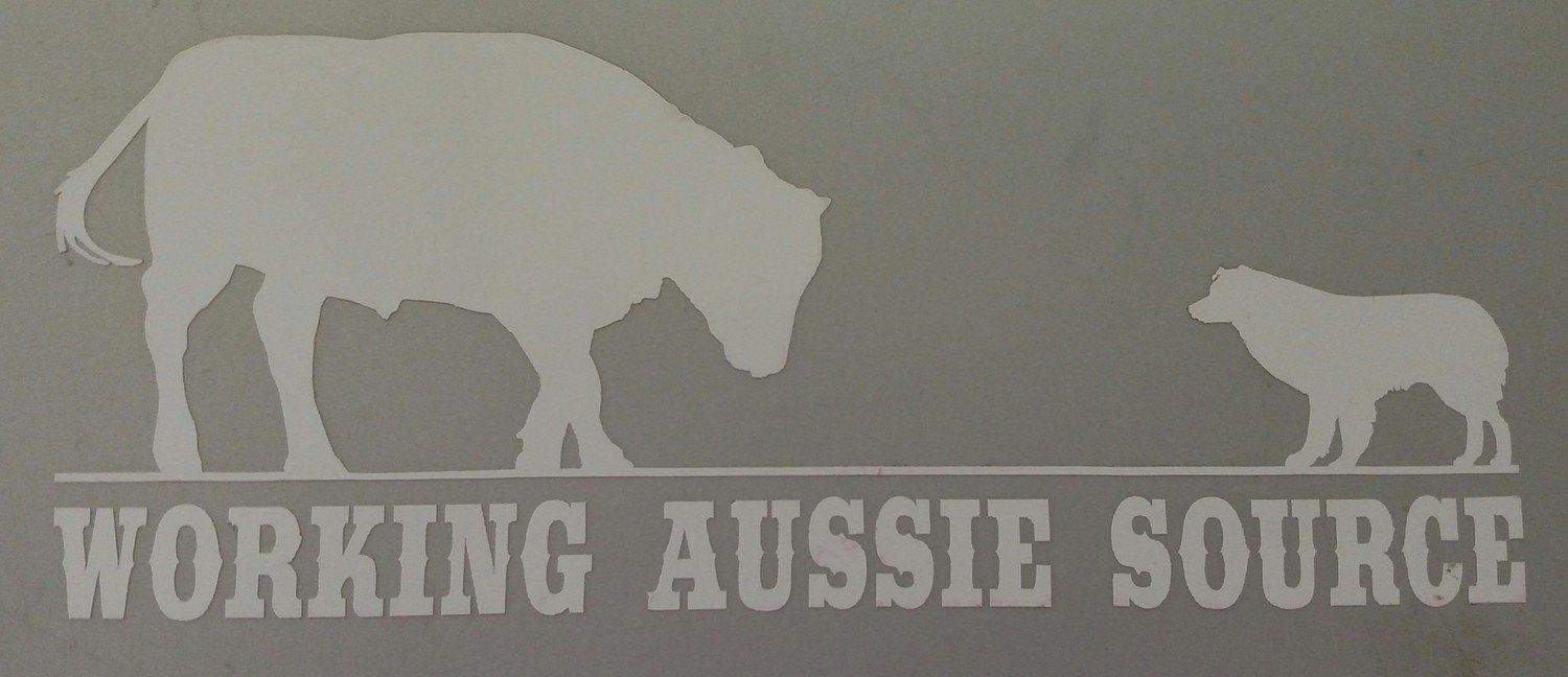Working Aussie Source Logo Sticker