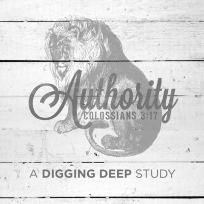 Digging Deep 2018: Authority (Free Download)
