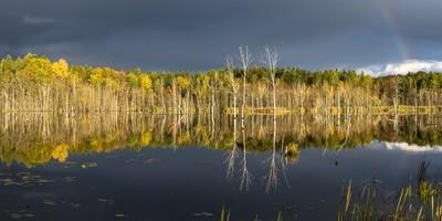 Over There, Skinner Marsh, Shallow Lake, Ontario, Canada
