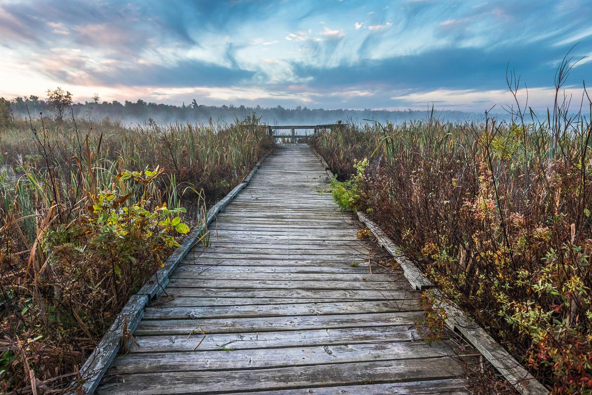 Carson Lake Boardwalk, Sauble Beach, Ontario, Canada