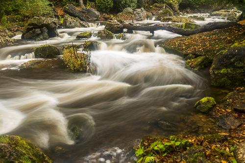 Below Inglis Falls, Sydenham River, Owen Sound, Ontario, Canada