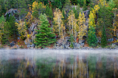 Colours Of Lake Opeongo, Algonquin Park, Ontario, Canada