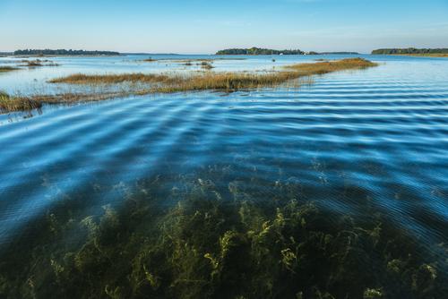 Oliphant Islands Criss Cross, Oliphant, Lake Huron, Ontario, Canada