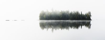 Island In The Mist, Lake Of Two Rivers, Algonquin Park, Ontario, Canada