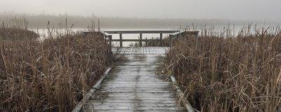 Carson Lake Walkway, Sauble Beach, Ontario, Canada