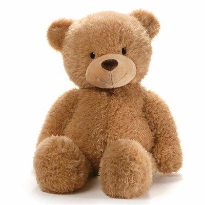 Teddy Bear Ginger 29