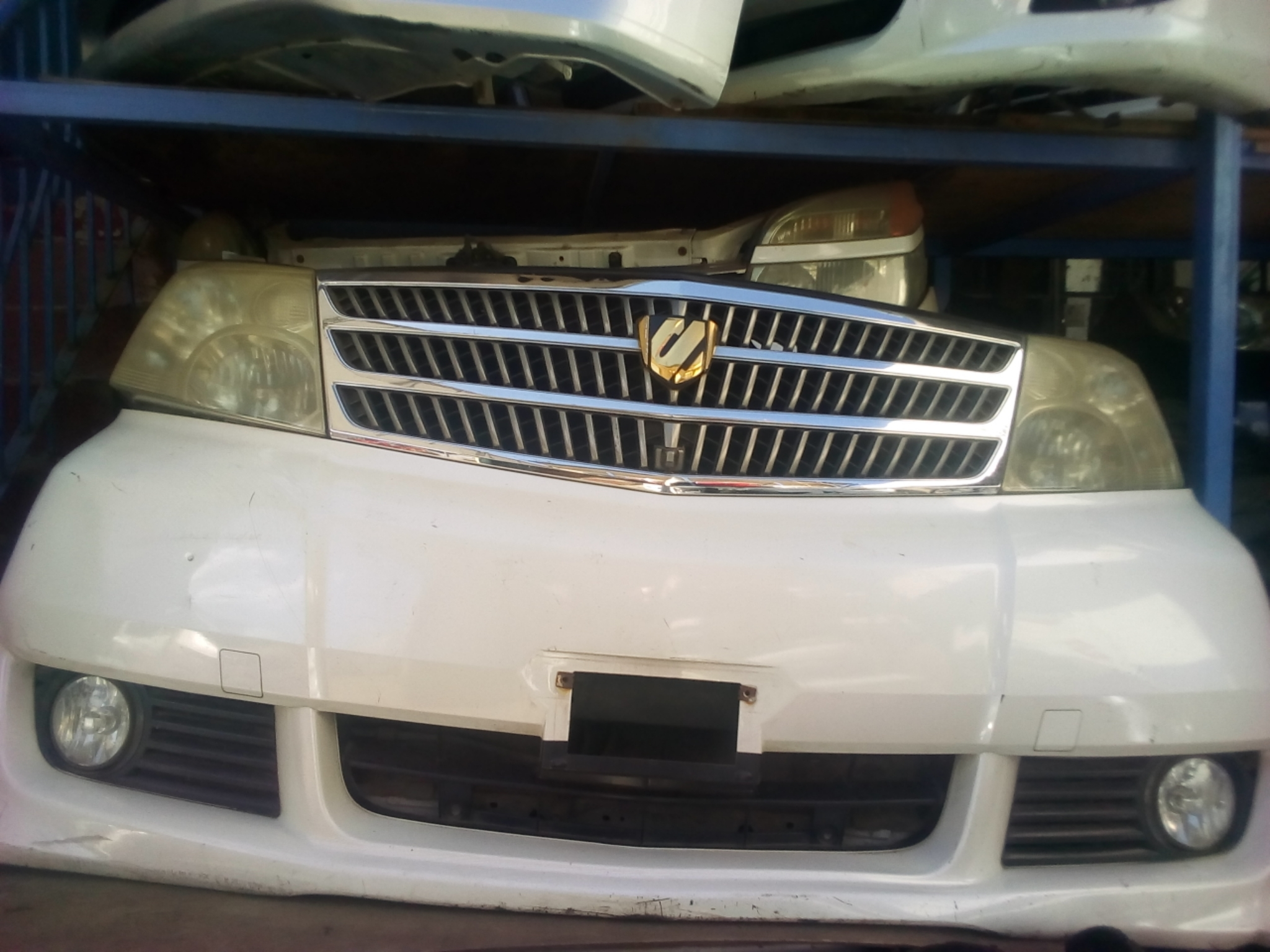 Toyota Alfred Nose Cut 03246