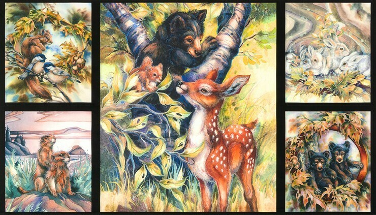 P002 ABK-17378-268 NATURE by Jody Bergsma from North American Wildlife