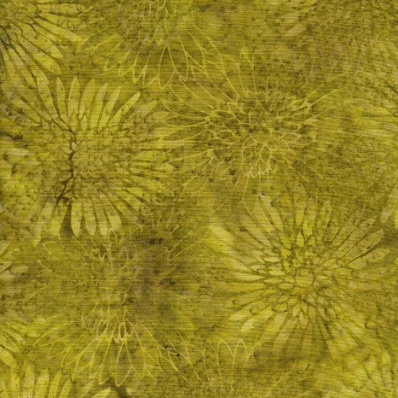 Xxx Zinnia Medium Sprout 111713601
