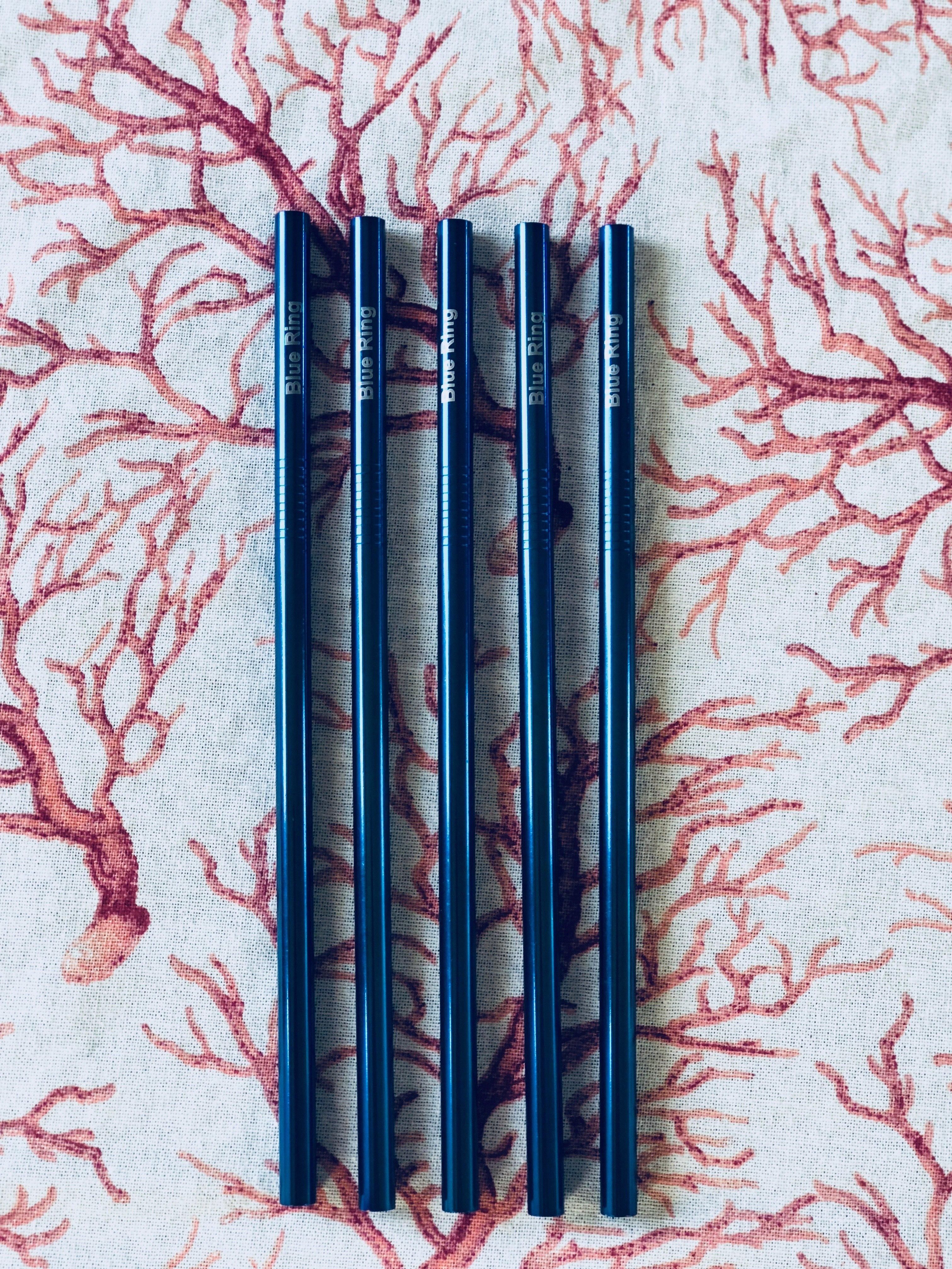 Metal straw (set of 5) 00038