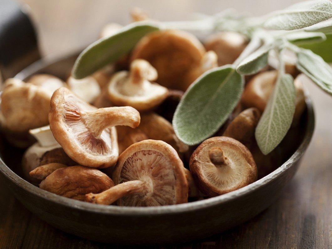 Wild Mushroom & Sage Olive Oil 00127