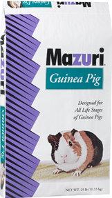 MAZ GUINEA PIG