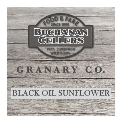 BLACKOIL SUNFLOWER