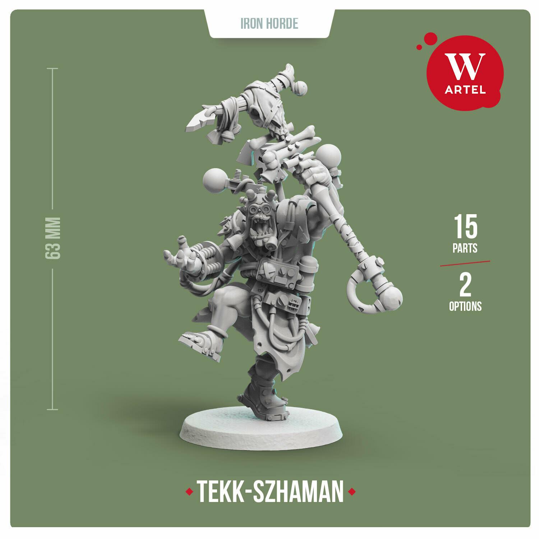 Tekk-Szhaman of Iron Horde