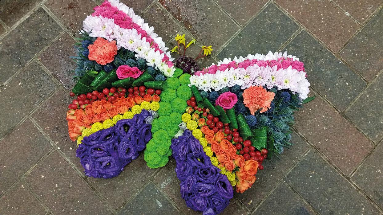 Butterfly Vibrant