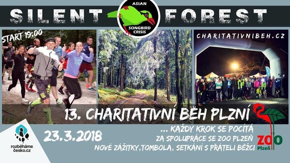 13. Charitativní běh Plzní 23. března (registrace) 00057