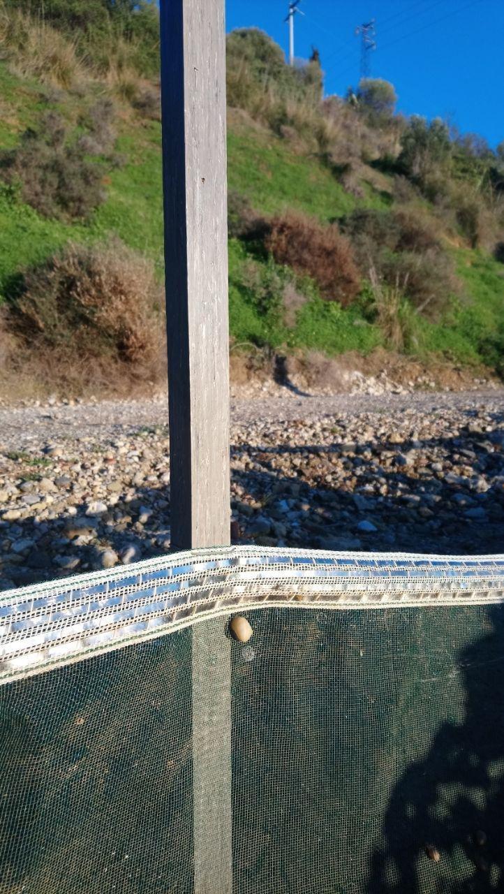 Palo in PVC per recinti Lumache (20 pz) PVC