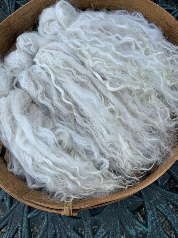 Suri Alpaca Locks, 9 Inches, White, Royal Rose