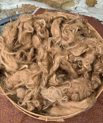 Suri Alpaca Fiber, 5 Inches, Dark Fawn, 2 Ounces,