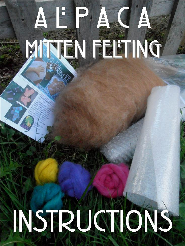 PDF Instructions - Felted Mittens 00229