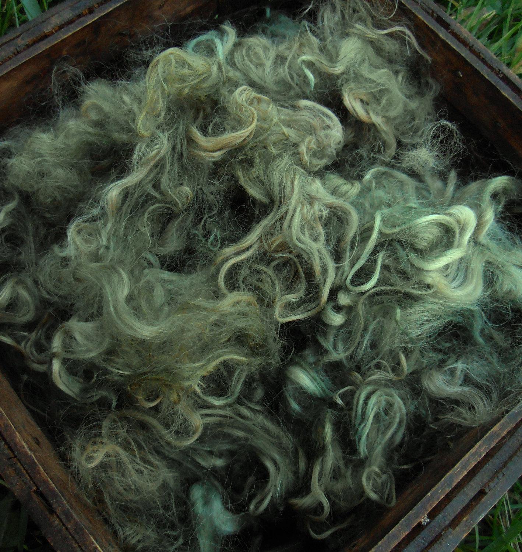 Hand-Dyed Suri Alpaca Fiber, 5 Inches, Olive 00274