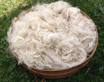 Suri Alpaca Fiber, 4  Inches, White, Miss Miami