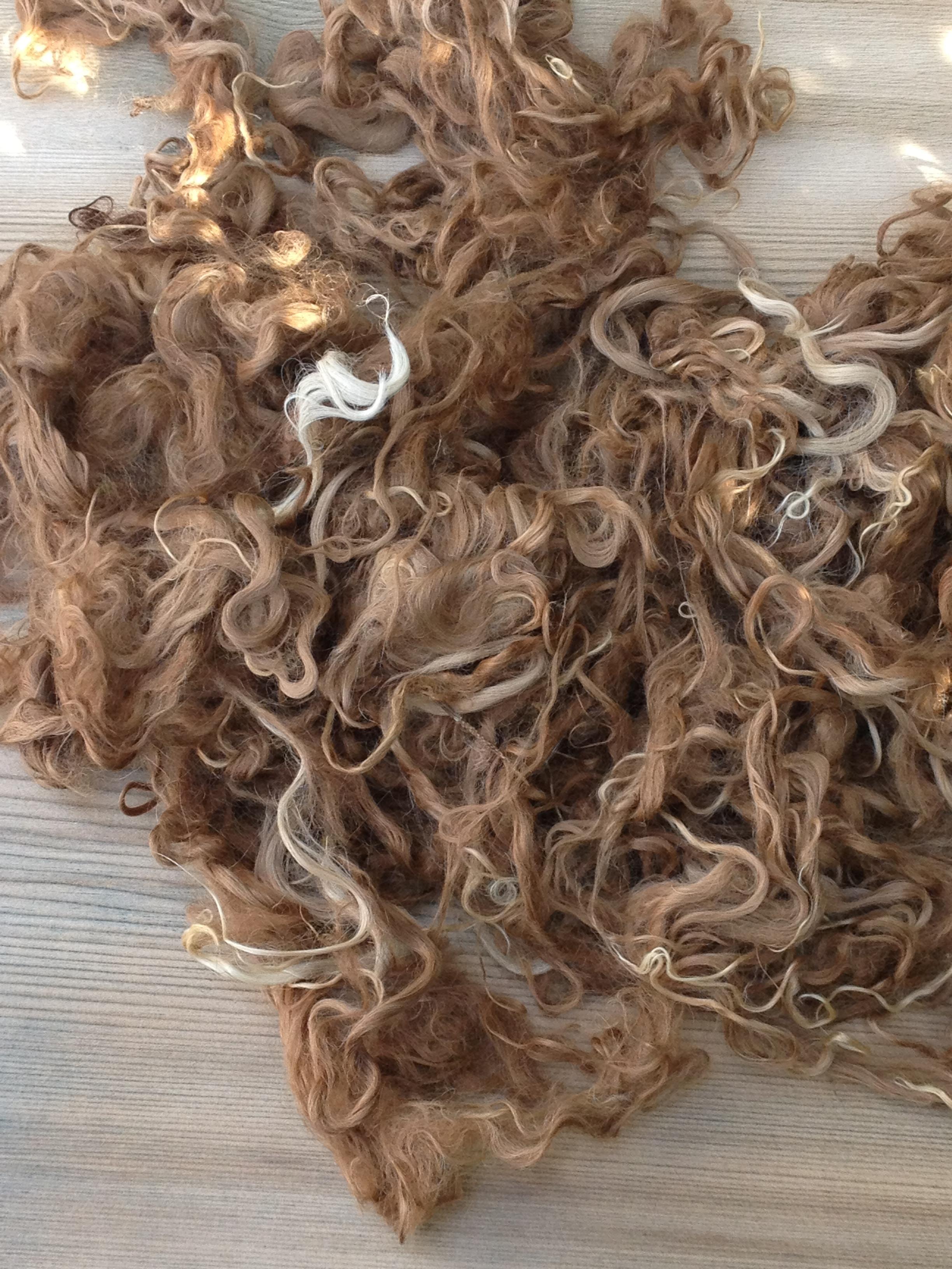 Suri Alpaca Fiber, 5 Inches, Light/Medium Fawn, Martha